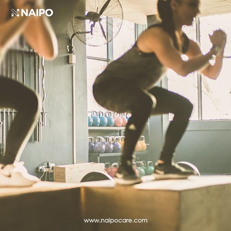 NAIPO Header Image